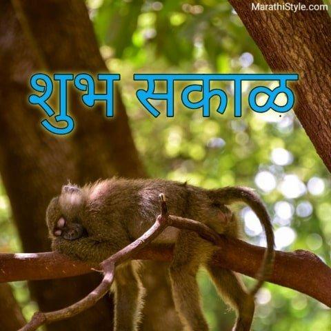 shubh sakal photo