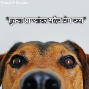 प्रेम सुंदर मराठी सुविचार   Prem Suvichar Marathi Thought Quotes Status