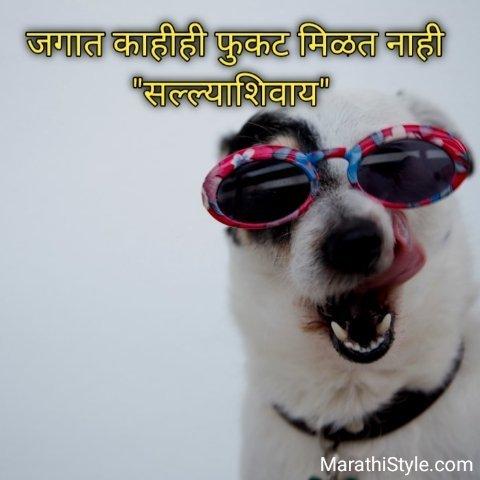 Marathi Funny Quotes