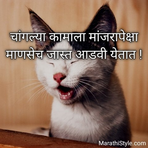 Marathi Funny Sms For Whatsapp
